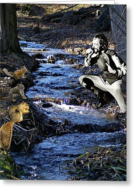 Greeting Card featuring the photograph Creekside Serenade By Ian by Ben Upham