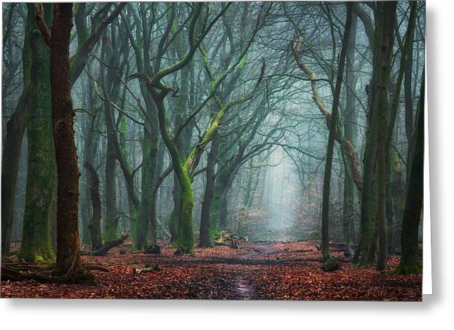 Creepy Forest Greeting Card by Martin Podt