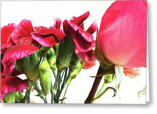 Creepy-red Flowers Greeting Card