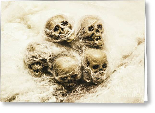 Creepy Skulls Covered In Spiderwebs Greeting Card
