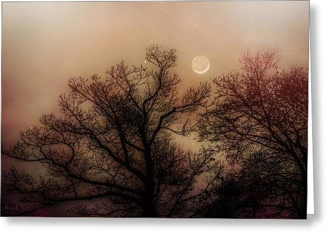 Crescent Between The Trees Greeting Card by Bob Orsillo