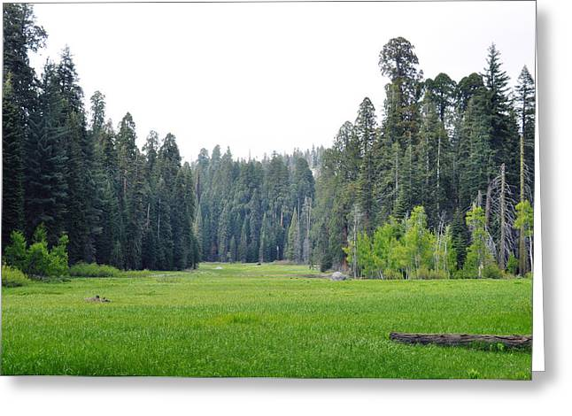 Greeting Card featuring the photograph Crescent Meadow by Kyle Hanson