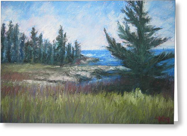 Maine Landscape Pastels Greeting Cards - Cresque Point Pines Greeting Card by Lynne Vokatis