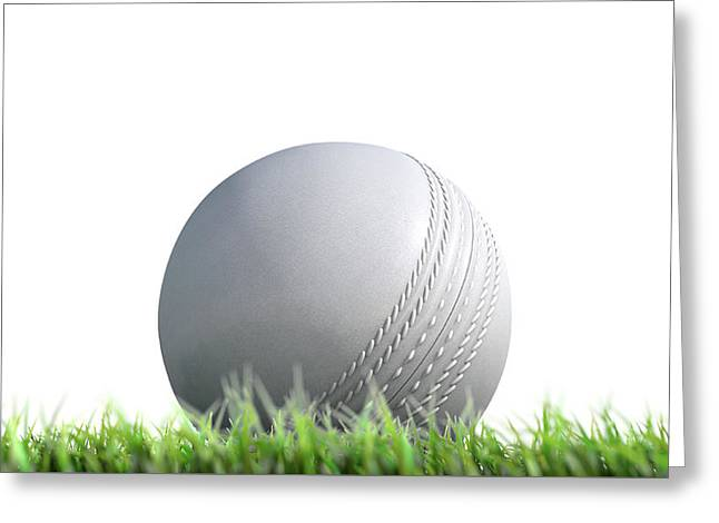 Cricket Ball Resting On Grass Greeting Card