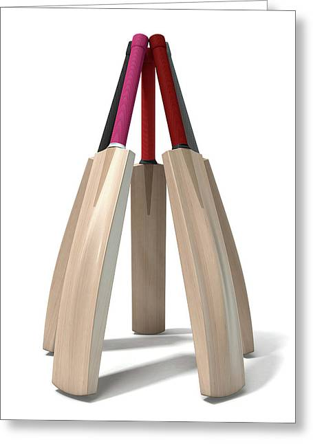 Cricket Bat Circle Greeting Card by Allan Swart