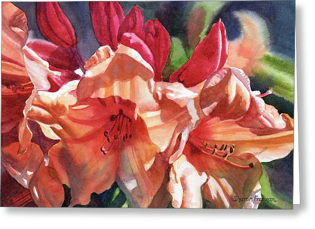 Crimson And Bronze Rhododendron Greeting Card