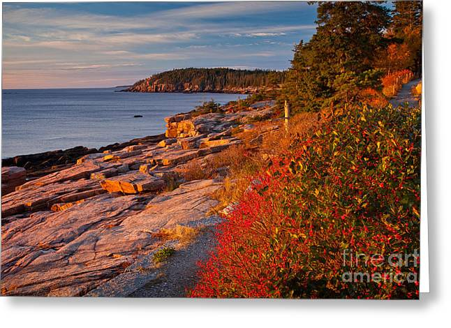Crimson Cliffs Greeting Card by Susan Cole Kelly
