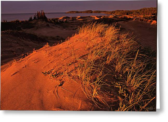 Crimson Dunes Greeting Card
