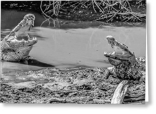 Croc Convo Greeting Card