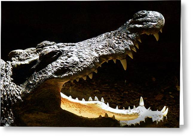 Crocodile Greeting Card by Scott Hovind