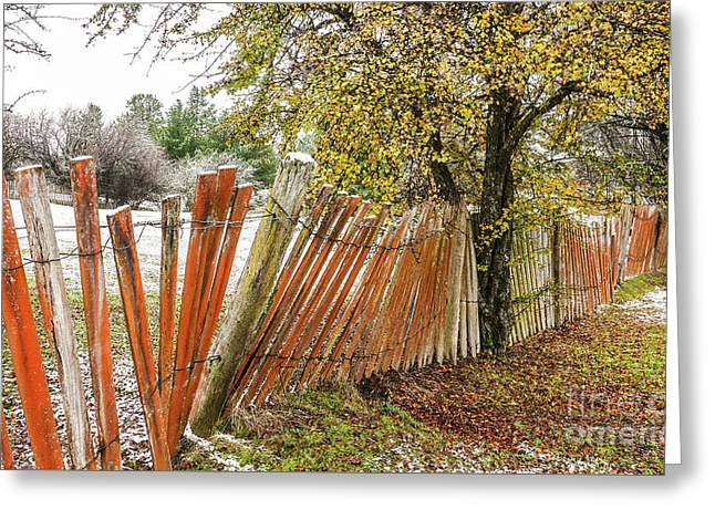 Crooked Fence Line Greeting Card by Lexa Harpell