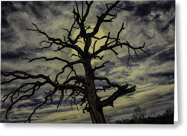 Crooked Sky Greeting Card by David Longstreath