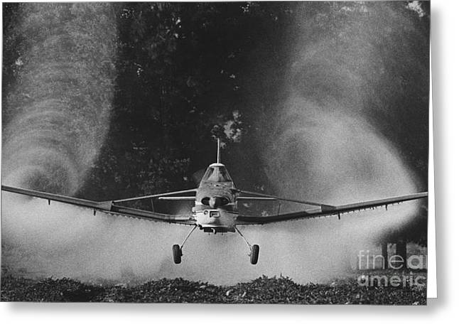 Crop Duster Greeting Card by Jim Wright