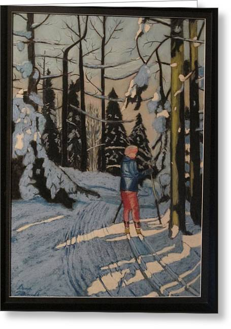 Cross Country Skiing In Upstate Ny Greeting Card