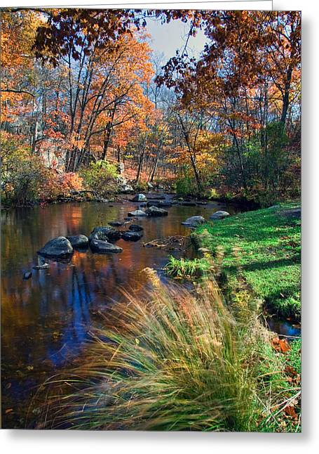 Cross River Greeting Card by June Marie Sobrito