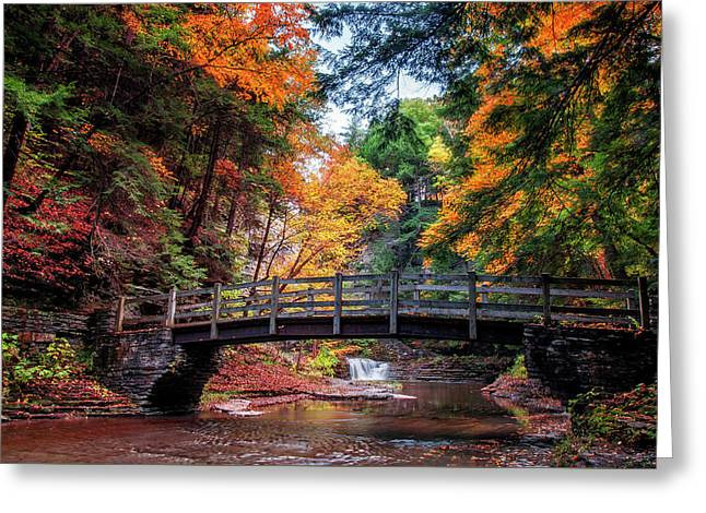 Crossing Over Greeting Card by Mark Papke