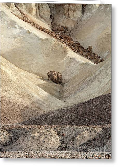 Greeting Card featuring the photograph Crossing Paths - Death Valley by Sandra Bronstein