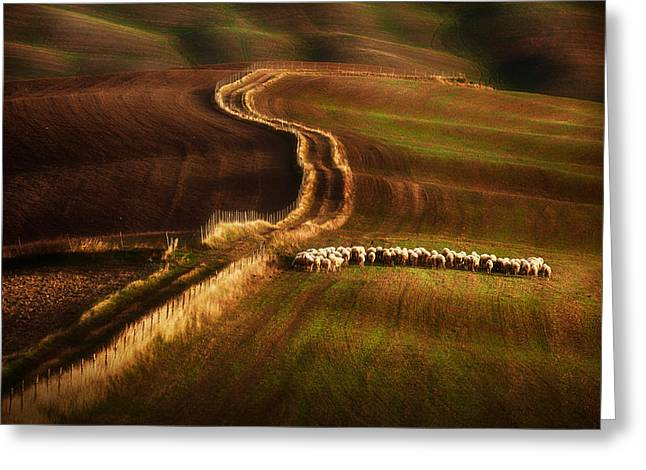 Crossing The Fields Greeting Card by Peter Svoboda