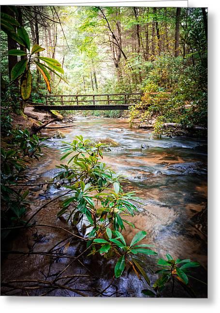 Crossing The Stream Greeting Card by Debra and Dave Vanderlaan