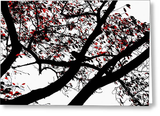 Crow And Tree In Black White And Red Greeting Card