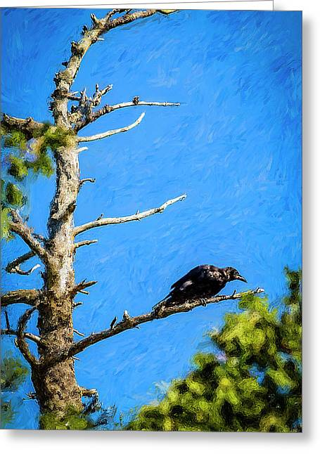 Crow In An Old Tree Greeting Card by Ken Morris
