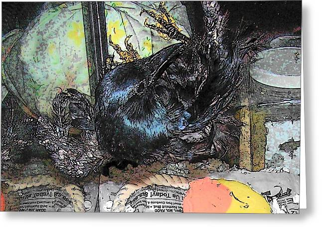 Greeting Card featuring the mixed media Crow Mid Flip by YoMamaBird Rhonda