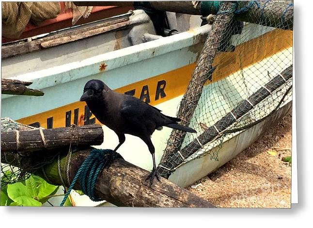 Crow N Boat Greeting Card by Noa Yerushalmi