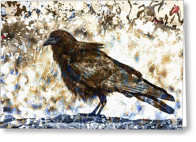 Crow On Blue Rocks Greeting Card by Carol Leigh