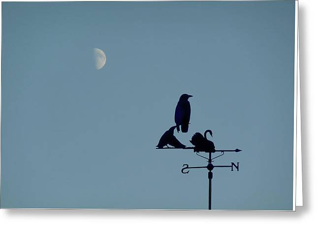 Greeting Card featuring the photograph Crow On Weathervane by Valerie Anne Kelly