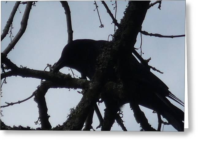Crow Silouette Greeting Card by Dawna Raven Sky