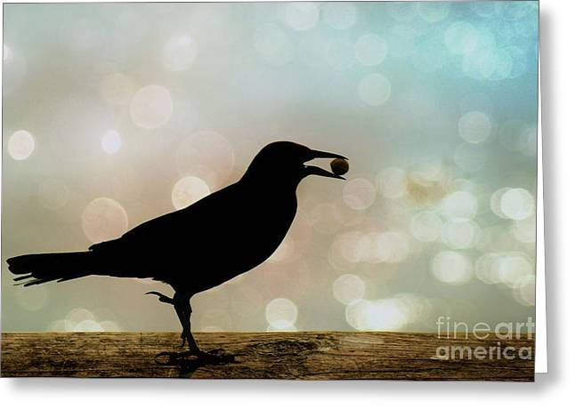 Greeting Card featuring the photograph Crow With Pistachio by Benanne Stiens