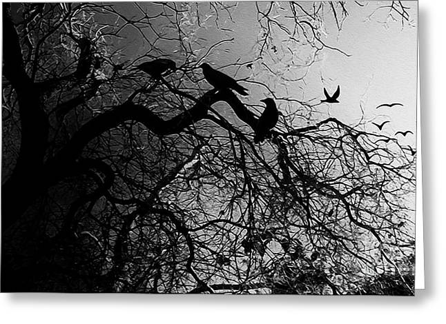 Crows 9a1 Greeting Card by Gull G