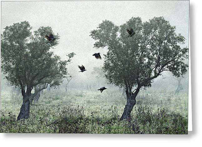 Crows In The Mist Greeting Card by S. Amer