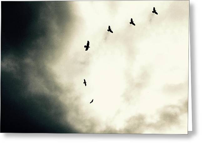 Crows On Christmas Eve 1 Greeting Card