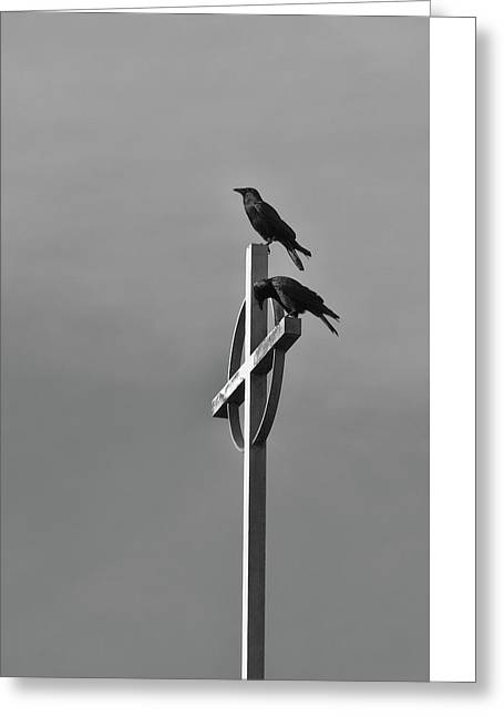Greeting Card featuring the photograph Crows On Steeple by Richard Rizzo