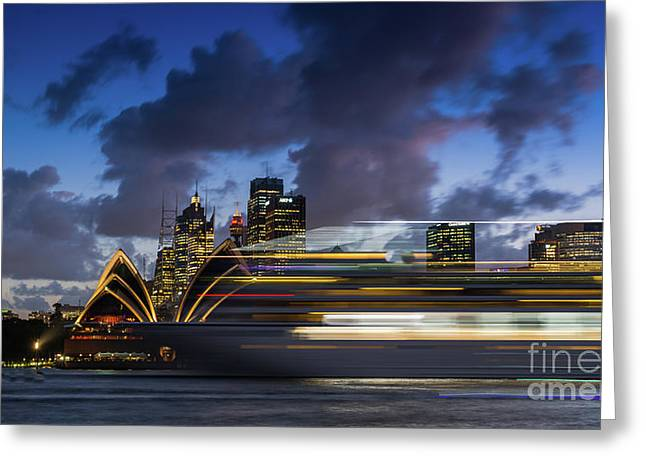 Cruise Ship Sydney Harbour Greeting Card by Andrew Michael