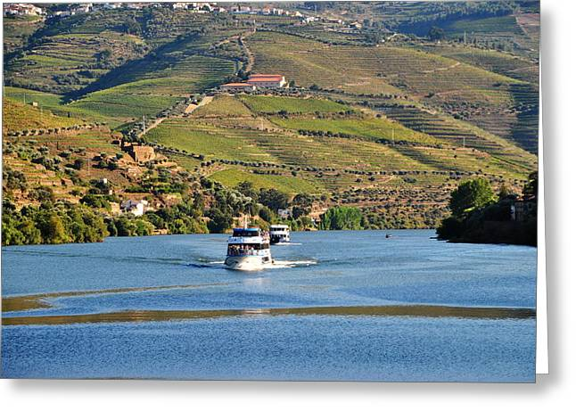 Cruising Douro River Valley Greeting Card by Jacqueline M Lewis
