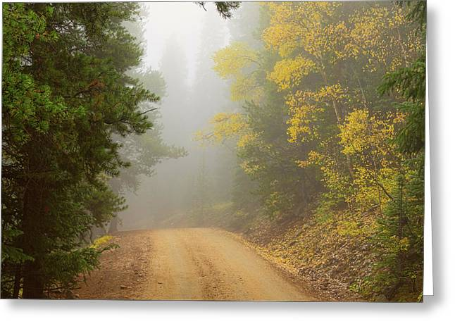 Cruising Into Autumn Fog Greeting Card