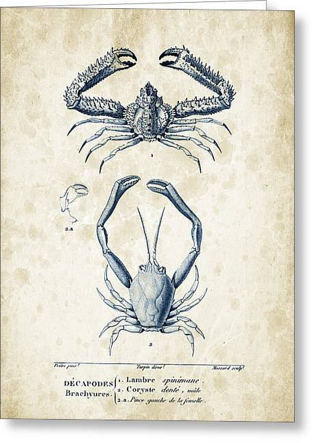 Crustaceans - 1825 - 01 Greeting Card by Aged Pixel