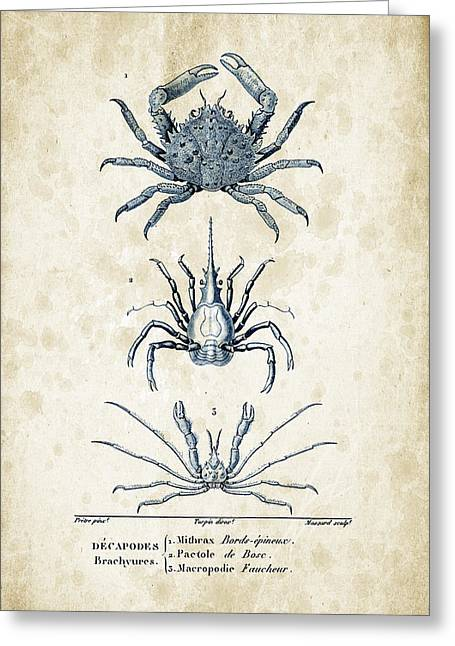 Crustaceans - 1825 - 21 Greeting Card by Aged Pixel