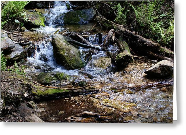 Greeting Card featuring the photograph Crystal Clear Creek by Ben Upham III