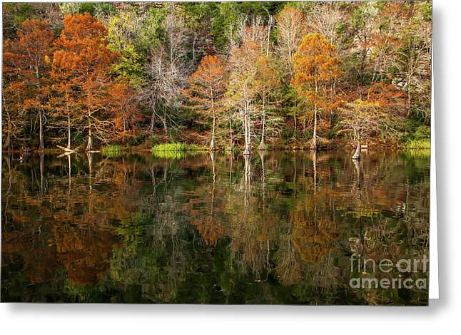 Greeting Card featuring the photograph Crystal Clear by Iris Greenwell