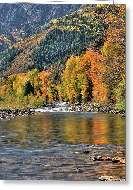 Crystal River Fall Color Greeting Card