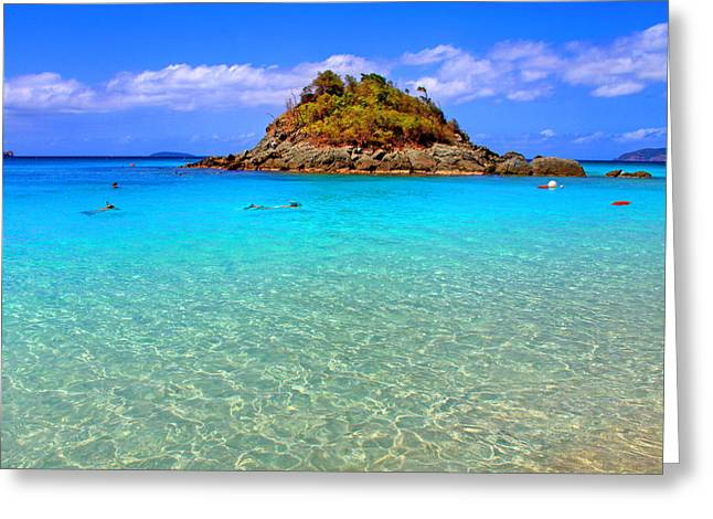 Beach Vista Greeting Cards - Crystal Waters Greeting Card by Scott Mahon