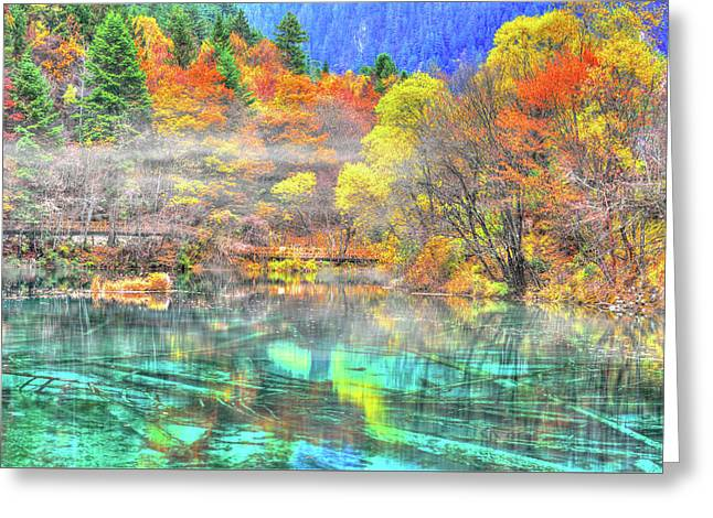 Crystals In The Fall Greeting Card by Midori Chan
