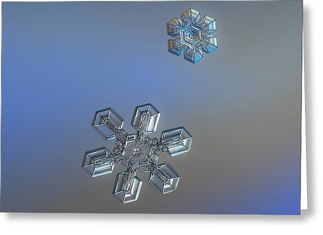 Greeting Card featuring the photograph Crystals Of Day by Alexey Kljatov