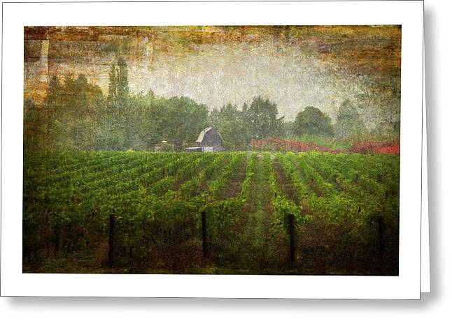 Greeting Card featuring the photograph Cultivating A Chardonnay by Jeffrey Jensen