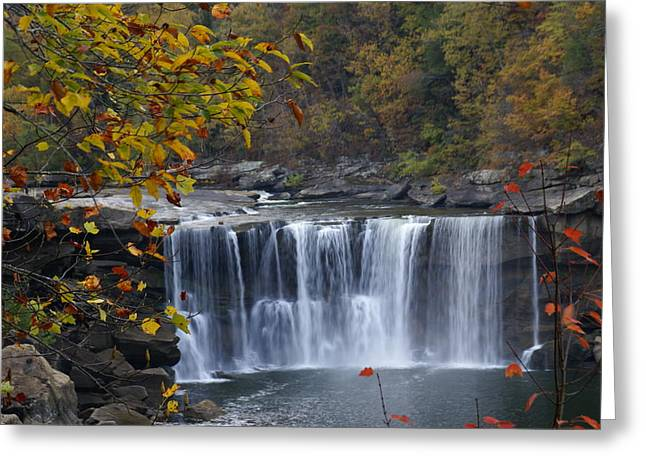 Cumberland Falls In Gold Greeting Card
