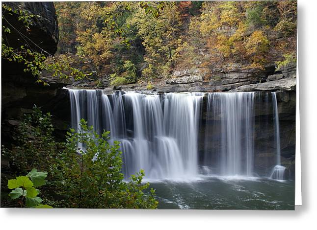 Cumberland Falls In Green Greeting Card by Bj Hodges