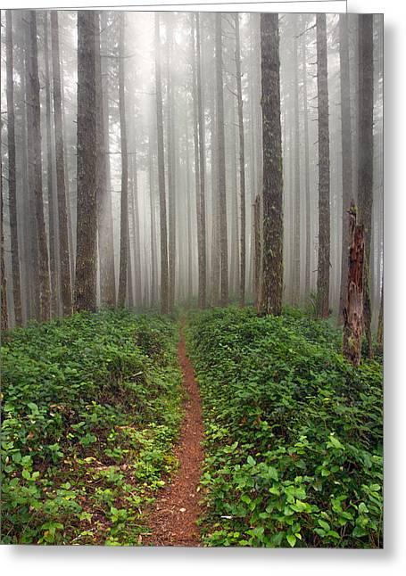 Cummins Wilderness Hike Greeting Card by Leland D Howard
